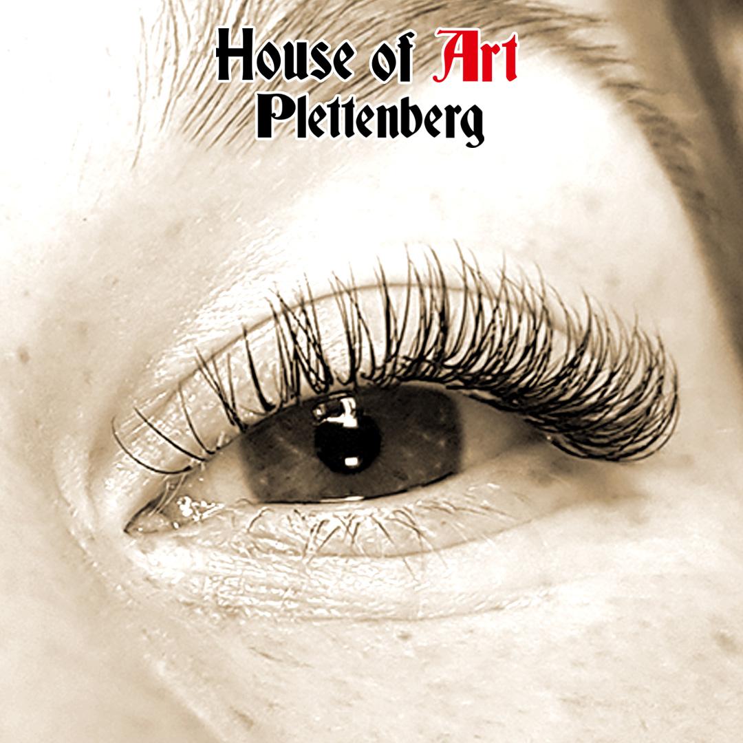 Winpernlifting im House of Art Plettenberg